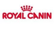 ROYAL CANIN  Nuestros ejemplares se alimentan  solo con alimentos de alta gama,  Royal Canin