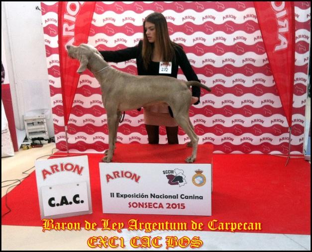 baron sonseca 2015 1
